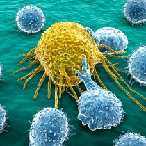 The Use of Immunotherapy in Cancer Treatment